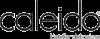 CALEIDO design radiators CO.GE.FIN S.r.l. Logo