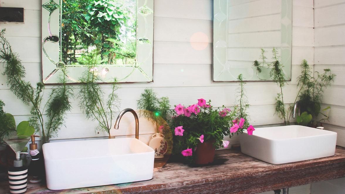 pflanzen im badezimmer meister der elemente. Black Bedroom Furniture Sets. Home Design Ideas